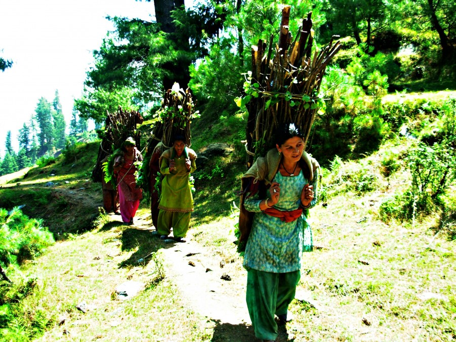 Women with fuelwood